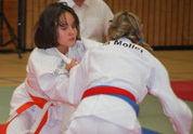 judo_beitrag_alt_Bürstadt2010